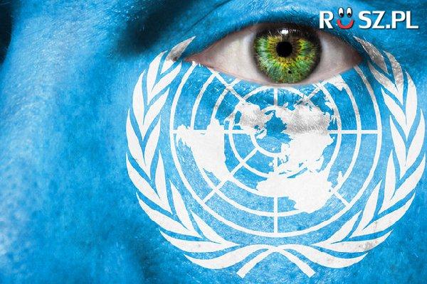 Ilu członków ma ONZ?