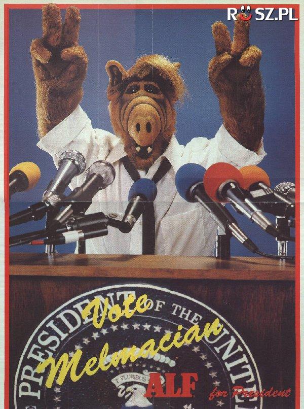 Ile żołądków miał Alf ?