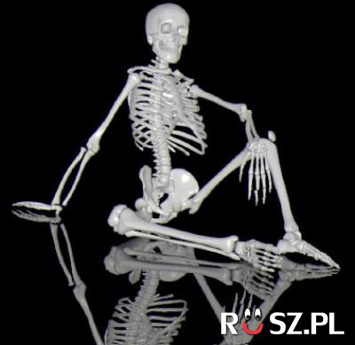 Jaka jest średnia waga szkieletu ?
