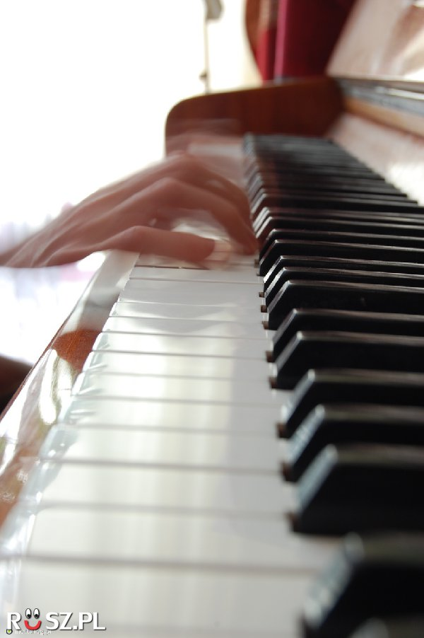 Ile klawiszy ma fortepian?
