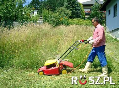 Ile lat temu wynaleziono kosiarkę trawnikową?