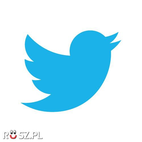 Za ile Twitter zakupił swoje logo ?