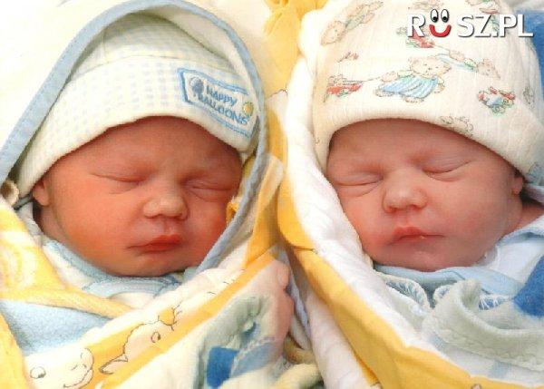 Co który poród rodzą się bliźniaczki?