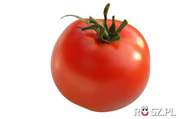 W ilu % pomidory składają się z wody ?