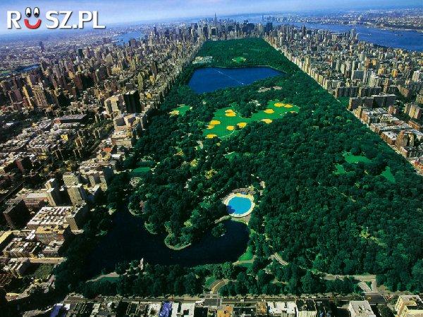 Ile miliardów dolarów wart jest nowojorski Central Park?