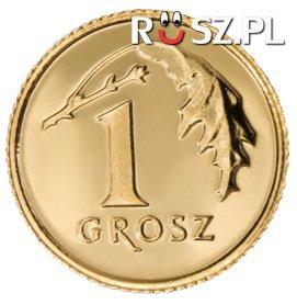 Ile dostaniemy za pół miliona PLN oddanych na złom w 1-groszówkach?