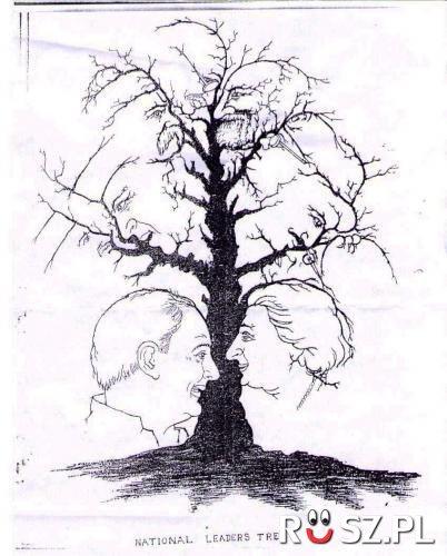 Ile widzisz twarzy?