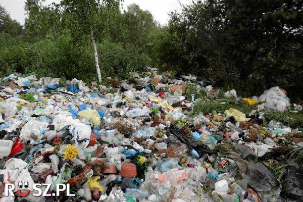 Ile % odpadów można wykorzystać ponownie, dzięki segregacji ?