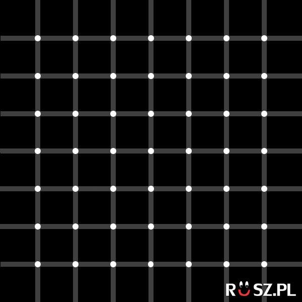 Ile widzisz czarnych kropek?