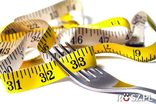 Ile posiłków dziennie zalecają dietetycy?