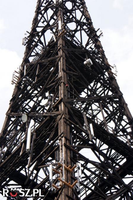 Jakiej wysokości jest najwyższa drewniana konstrukcja ?
