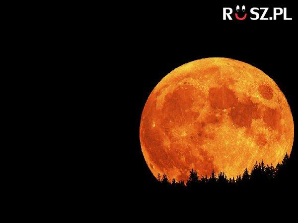 Ile minut spędził na księżycu Louis Armstrong?